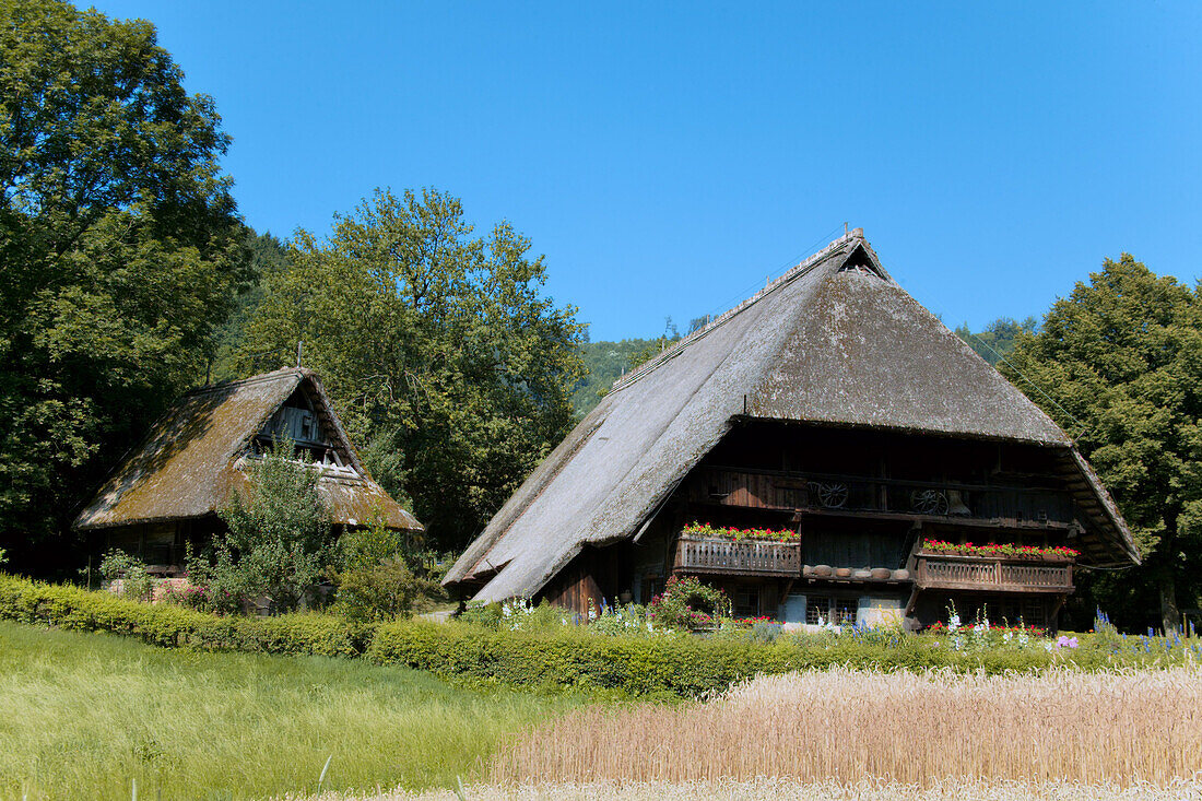 Old Black Forest Farmhouse in Summertime, Gutach, Black Forest, Germany