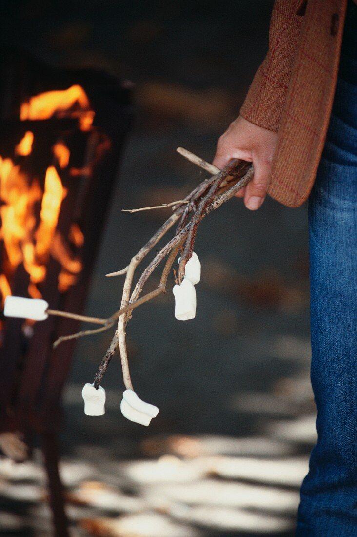 Marshmallows on thin twigs
