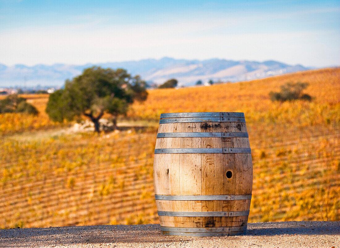 Oak Barrel at Vineyard, CA, USA