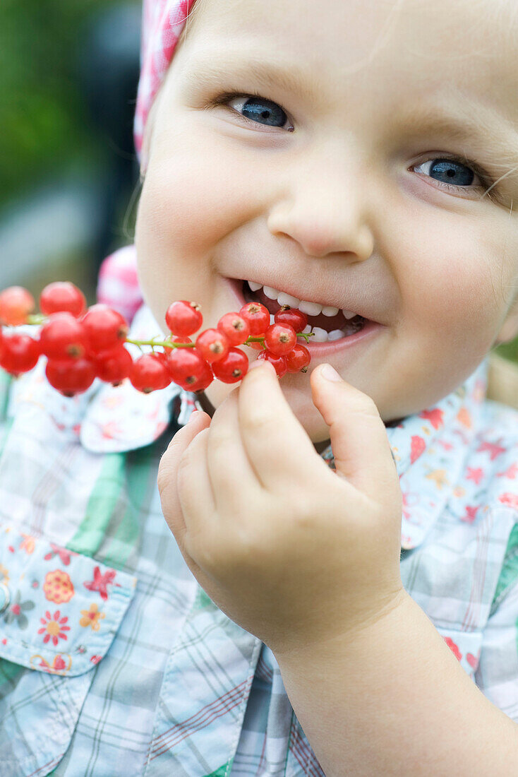 Little girl eating red currants off stem, smiling at camera