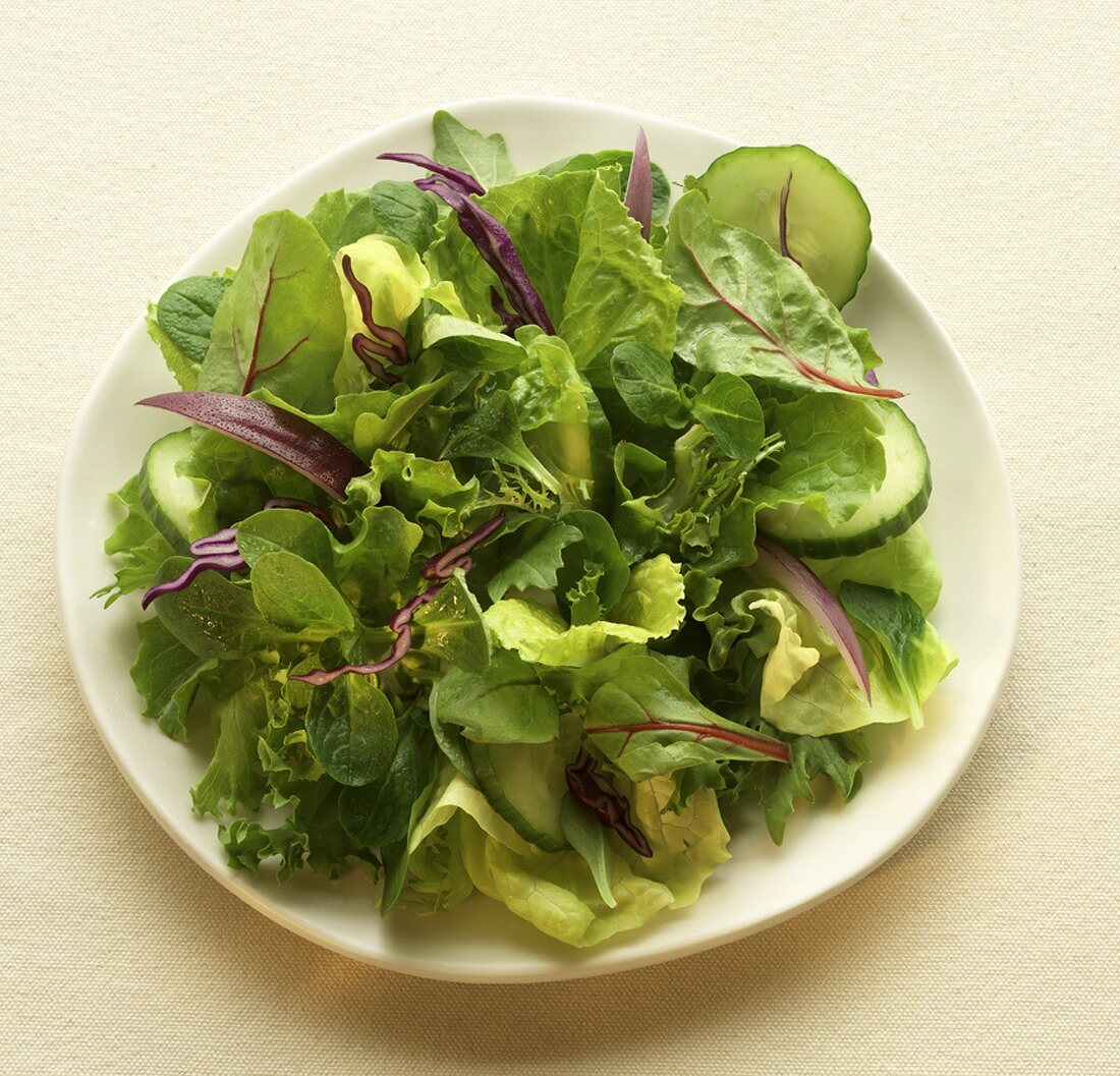 Tossed Green Salad on a White Plate