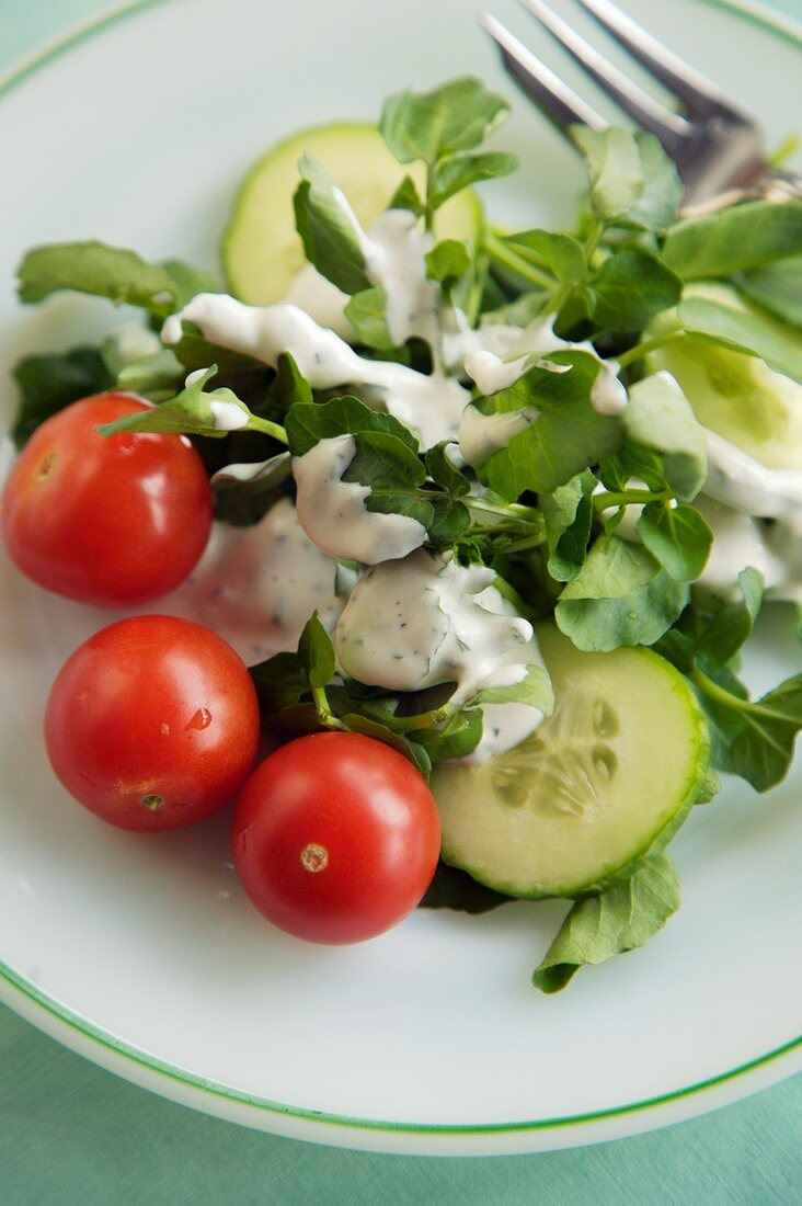 Watercress Salad Topped with Ranch Dressing