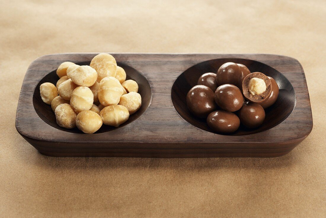 Roasted and Chocolate Covered Macadamia Nuts in a Divided Dish