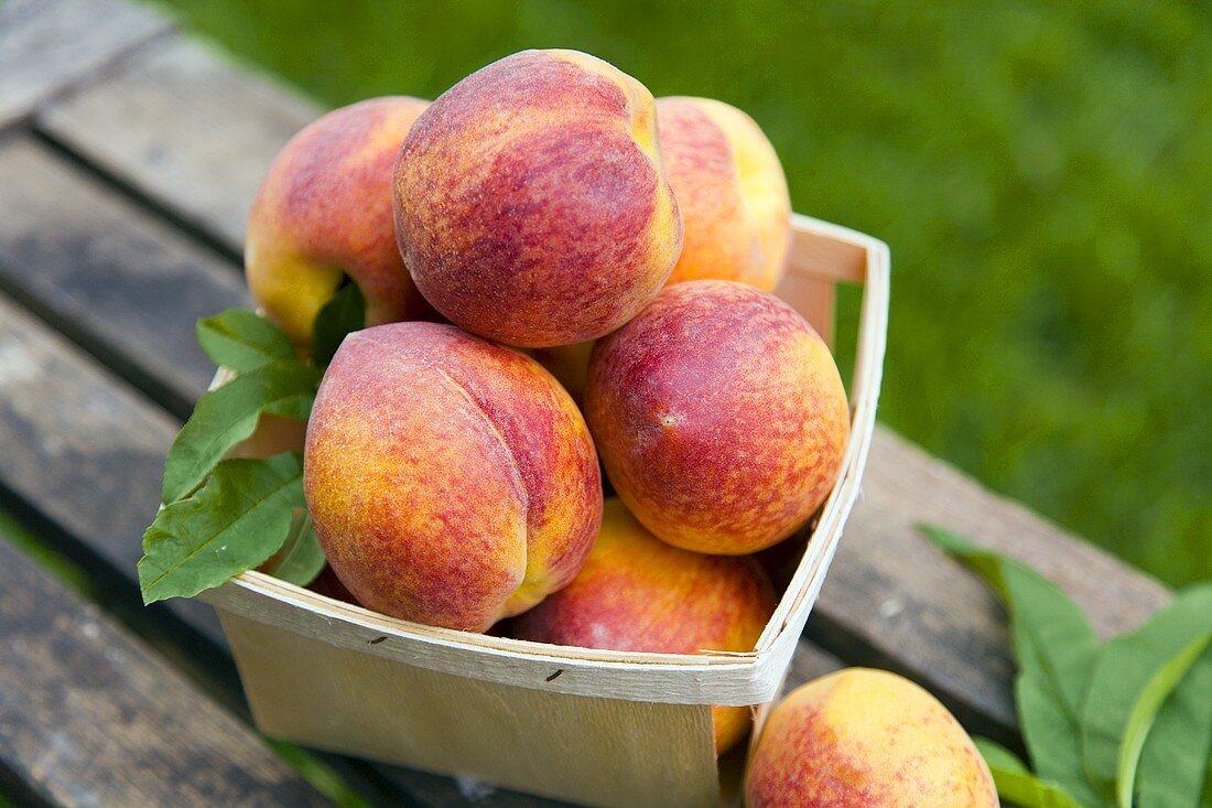 Basket of Fresh Peaches; Outdoors