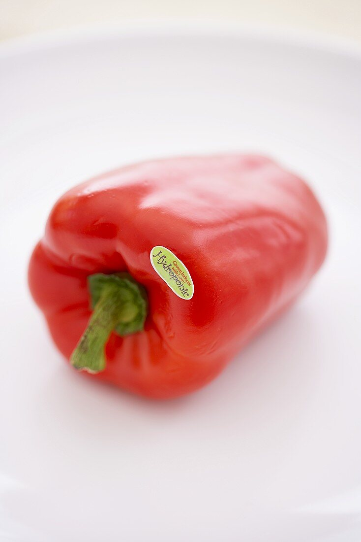 Hydroponic Grown Red Bell Pepper on a White Background