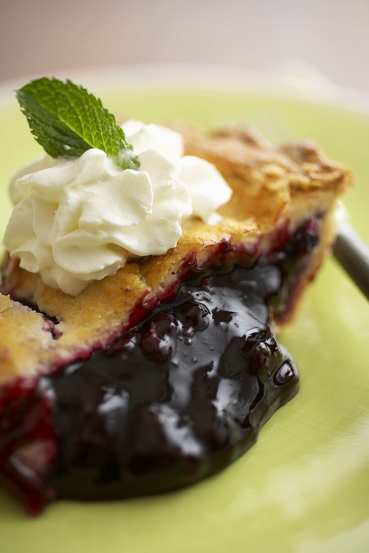 Close Up of a Slice of Blueberry Pie with Whipped Cream