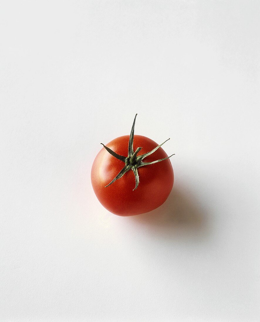 Tomato on a White Background