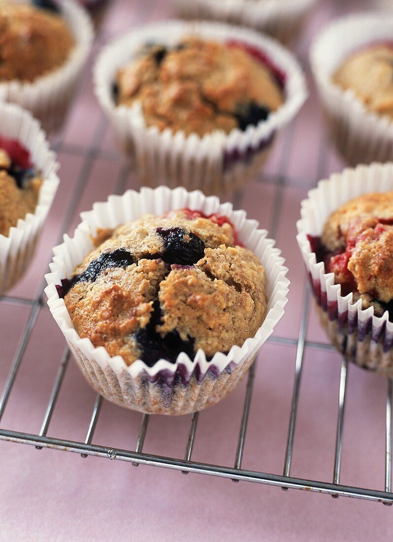 Blueberry Muffins in Paper Muffin Cups on a Cooling Rack