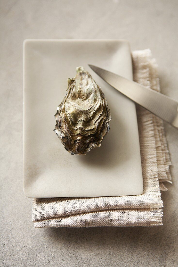 Whole Oyster with a Knife