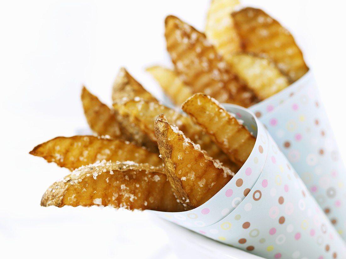 Salted Pub Fries in Paper Cones