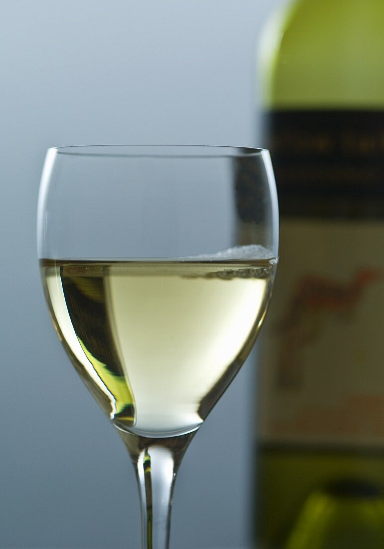 Glass of Pinot Blanc