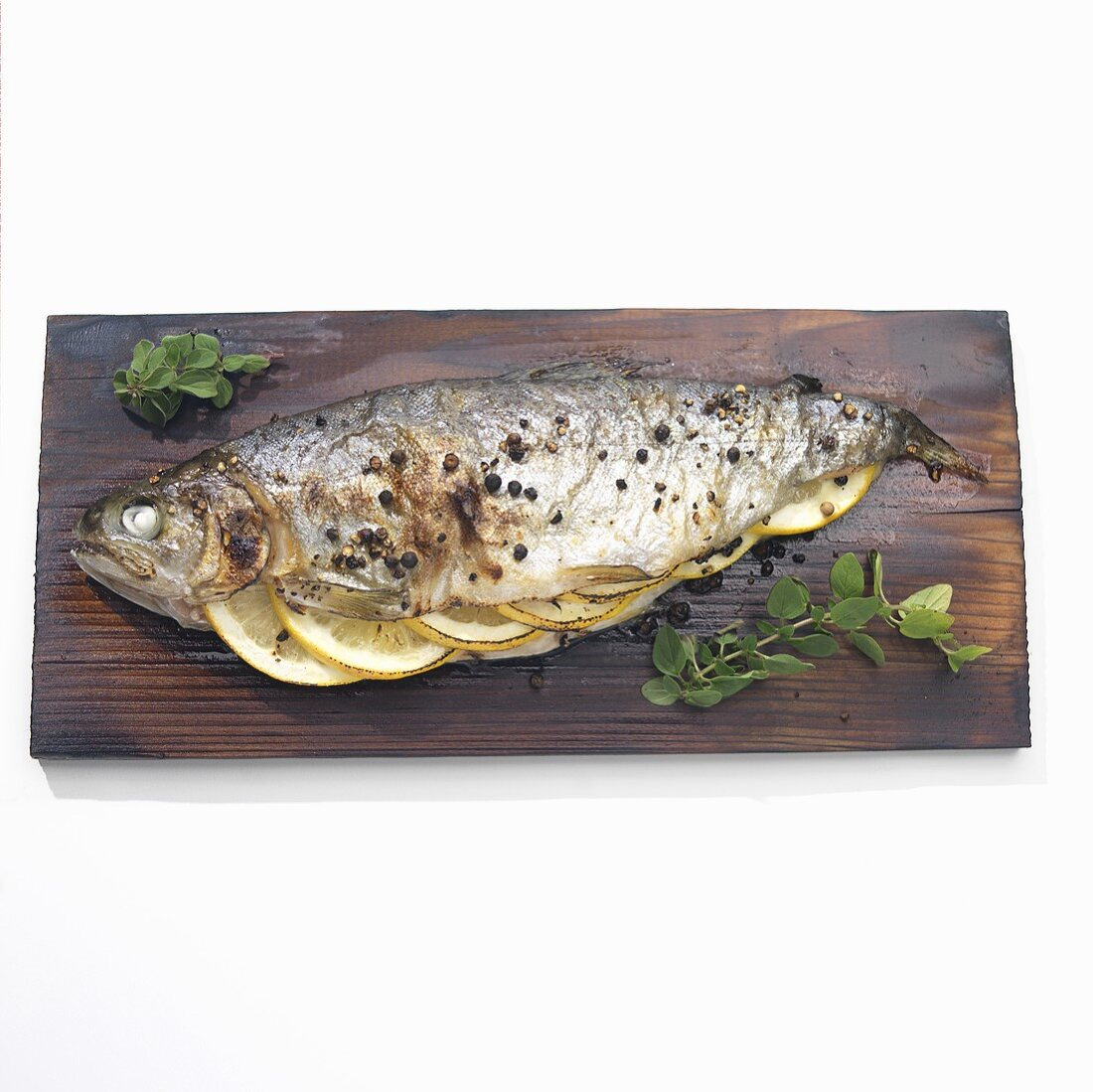 Trout Stuffed with Lemon, Pepper and Herbs; Cooked on Cedar Plank