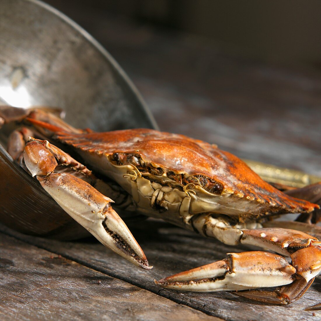 Whole Crab on Rustic Wooden Table