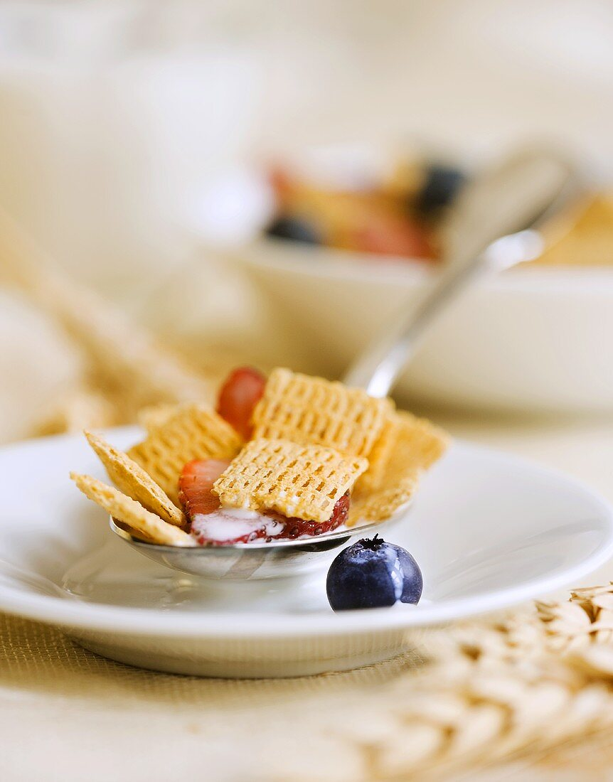 Spoonful of Chex Cereal with Berries; On Plate