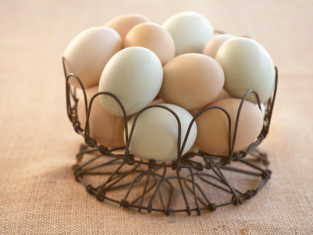 Fresh Eggs in a Wire Basket