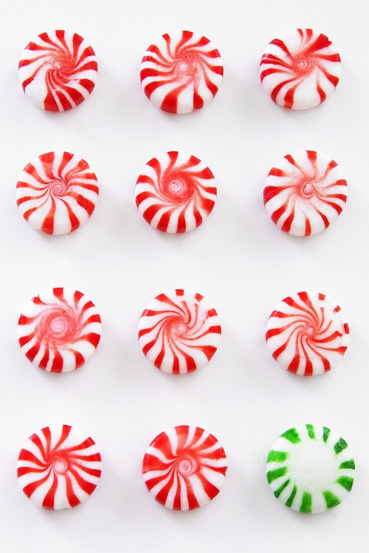 Many Red and White Peppermint Candies with One Green and White