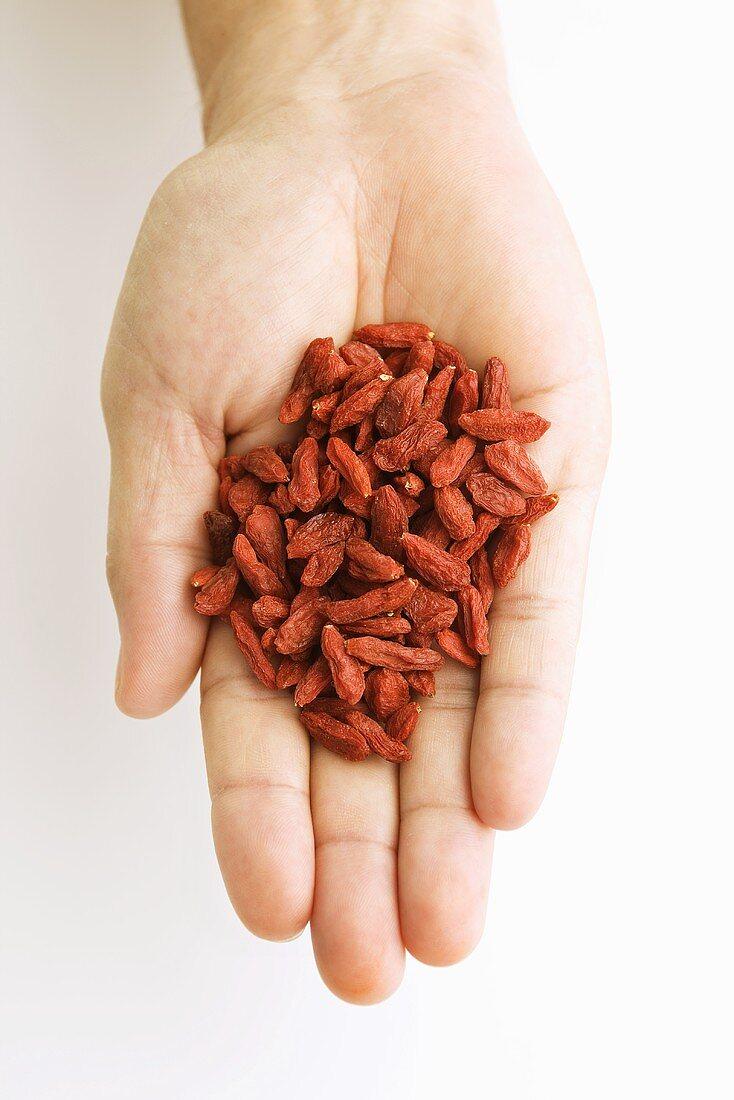 Hand Holding Dried Goji Berries