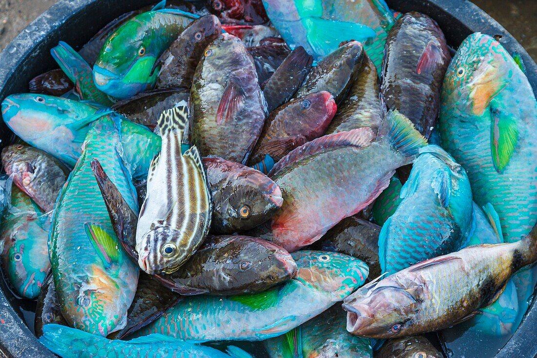 Market. Labuan Bajo. Flores island. Indonesia, Asia.