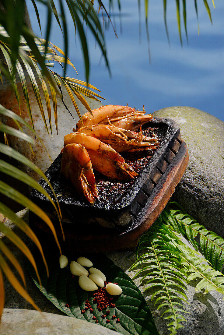 Ecuador, Pichincha Province, Pedro Vicente Maldonado, Arasha Resort Lodge, pink prawns Plancha recipe, traditional cooking with organic products from the domain