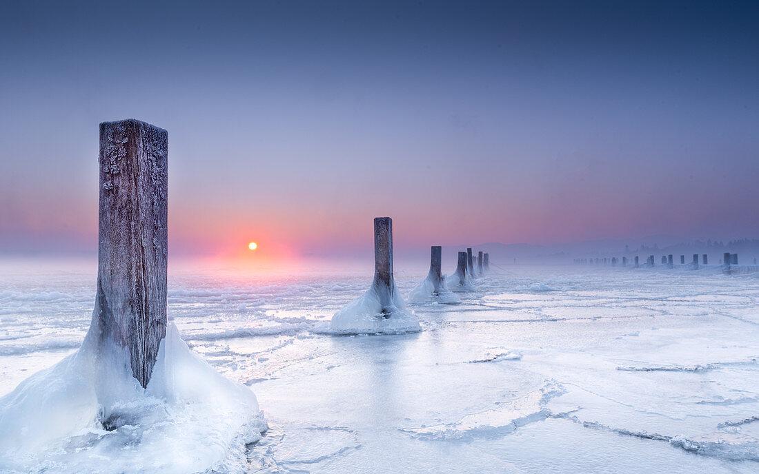 Eisiger Wintermorgen in verlassener Marina, Holzpfosten im gefrorenem See bei Sonnenaufgang, Seeshaupt,  Starnberger See, Bayern, Deutschland