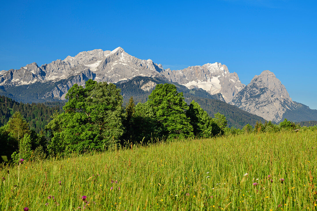 Wettersteingebirge mit Alpspitze und Zugspitze, Werdenfelser Land, Werdenfels, Bayerische Alpen, Oberbayern, Bayern, Deutschland