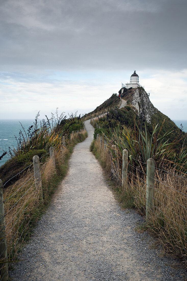Nugget Point in den Catlins, eine Region im Bezirk Otago in Neuseeland