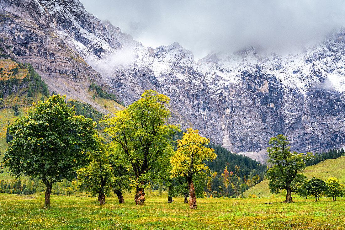 Ahornboden im Herbst, Eng, Karwendel, Deutschland