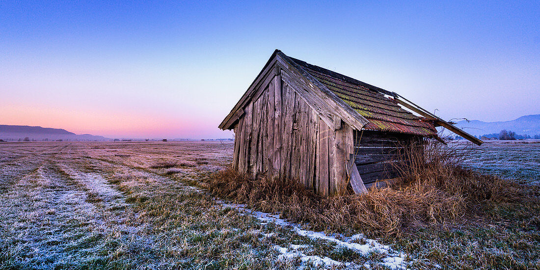 Crumbling barn in the blue land at sunset in winter, Grossweil, Bavaria, Germany