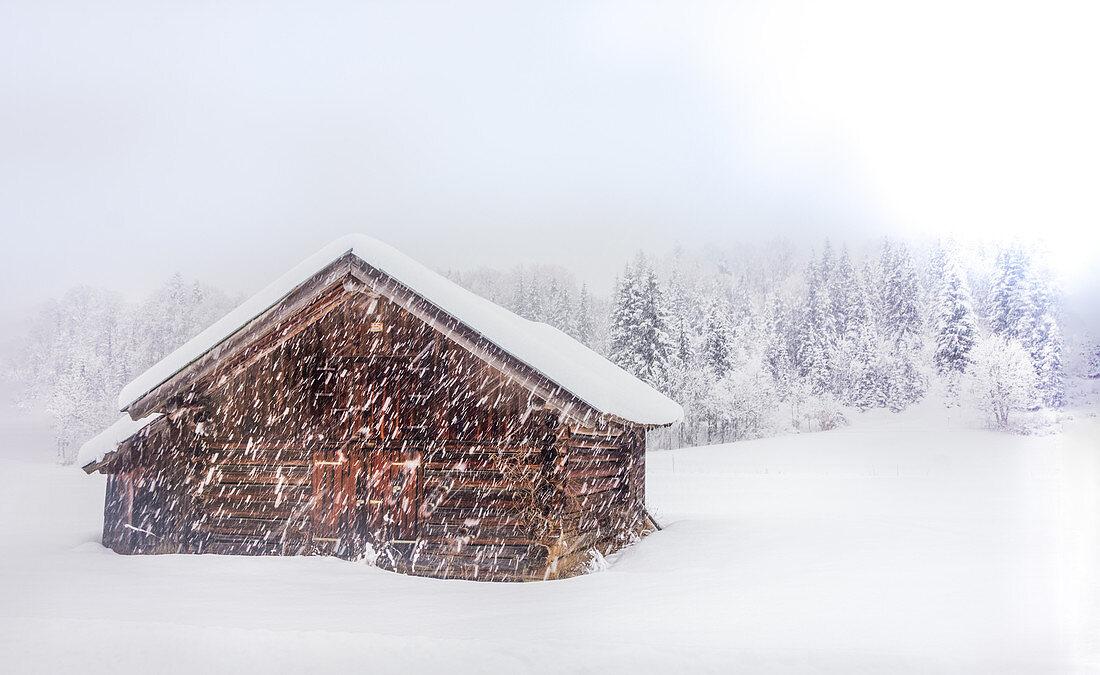Schneelandschaft bei Schneefall in Winterlandschaft mit Hütte, Bayern, Deutschland