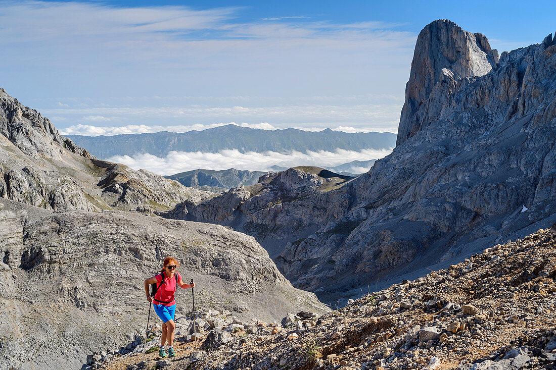 Frau beim Wandern steigt zum Torre de los Horcados Rojos auf, Picu Urriellu im Hintergrund, Nationalpark Picos de Europa, Kantabrisches Gebirge, Kantabrien, Spanien