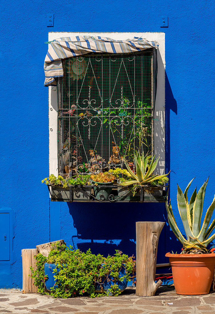 Fenster in Burano, Venedig, Venetien, Italien