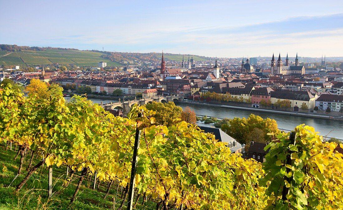 Blick mit Weinberg von der Festung auf Würzburg, Unter-Franken, Bayern, Deutschland