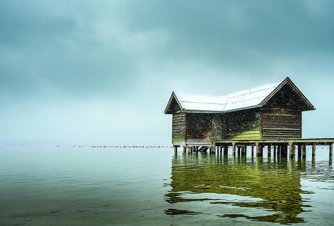 Beschneite Bootshütte mit Steg im Nebel am Starnberger See, Tutzing, Bayern, Deutschland, Bayern, Deutschland
