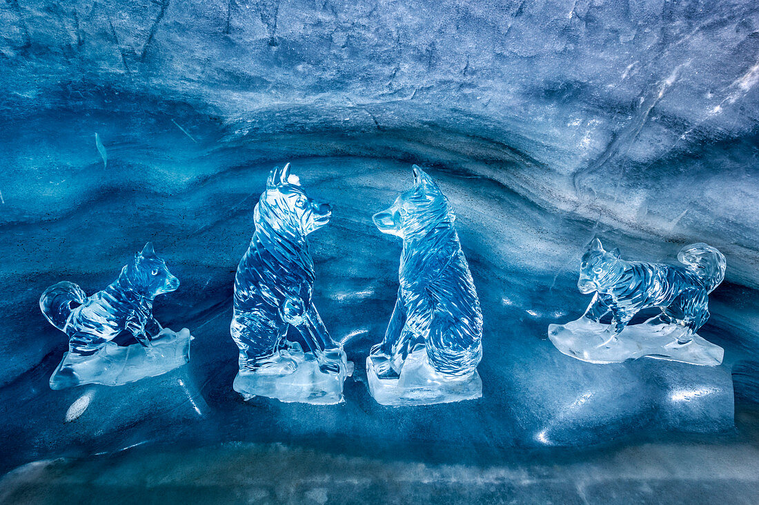 Dog ice sculptures in the ice palace at Jungfraujoch, Valais, Switzerland