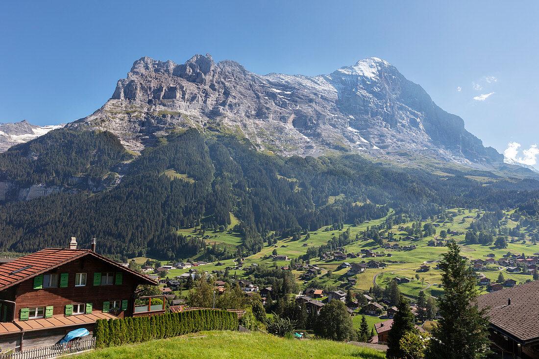 Schreckhorn behind, Grindelwald, Bernese Oberland, Switzerland