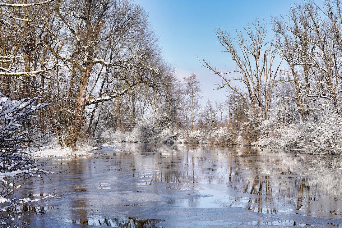 Winter morning at the backwater of the Ammer near Weilheim, Upper Bavaria, Germany, Europe