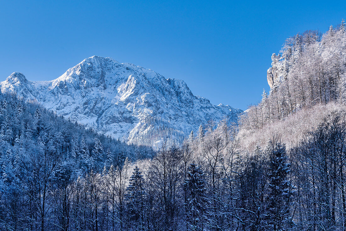 View of the Herzogstand on a cold winter morning, Kochel am See, Bavaria, Germany, Europe