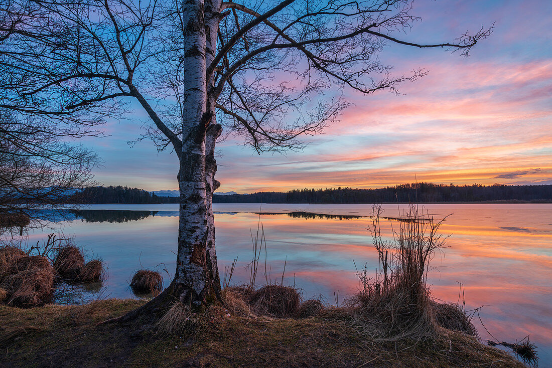 Sunny February evening at the Ostersee, Bavaria, Germany, Europe