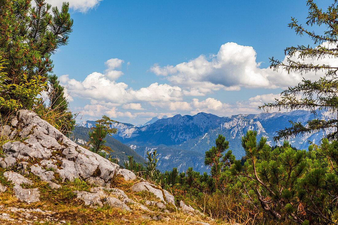 Blick ins Steinerne Meer im Sommer, Chiemgau, Bayern, Deutschland, Pinzgau, Salzburg, Österreich