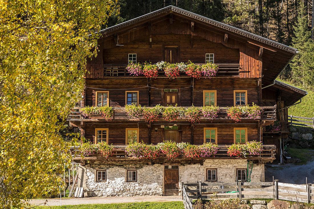 Alter Bauernhof im Winkeltal, Außervillgraten, Villgratental, Osttirol, Tirol, Österreich