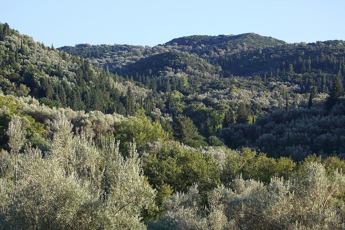 Landschaft bei Sivros, Insel Lefkada, Ionische Inseln, Griechenland