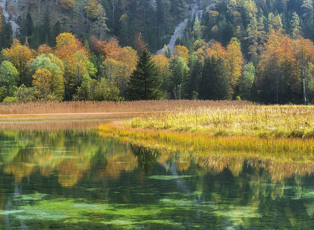 autumnal Brunnsee, Salzatal, Styria, Austria
