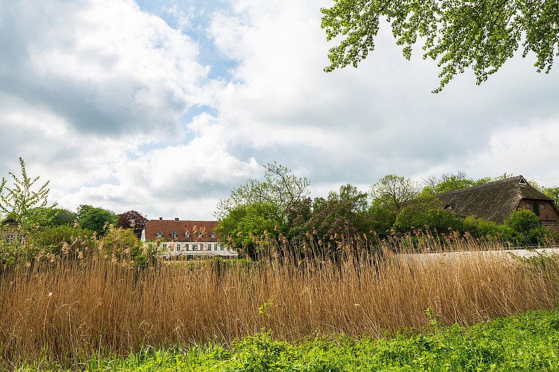 Gut Bienebek on the Schlei, Schlei, Schwansen, Thumby, Schleswig-Holstein, Germany