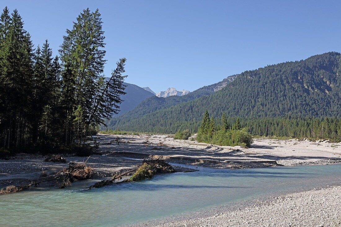 Isar near Vorderriß with a view of the Zugspitze, Isarwinkel, Upper Bavaria, Bavaria, Germany