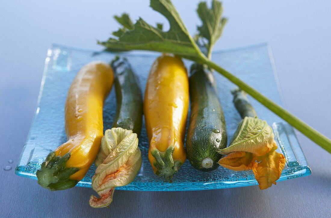 Yellow and green zucchini with blossoms