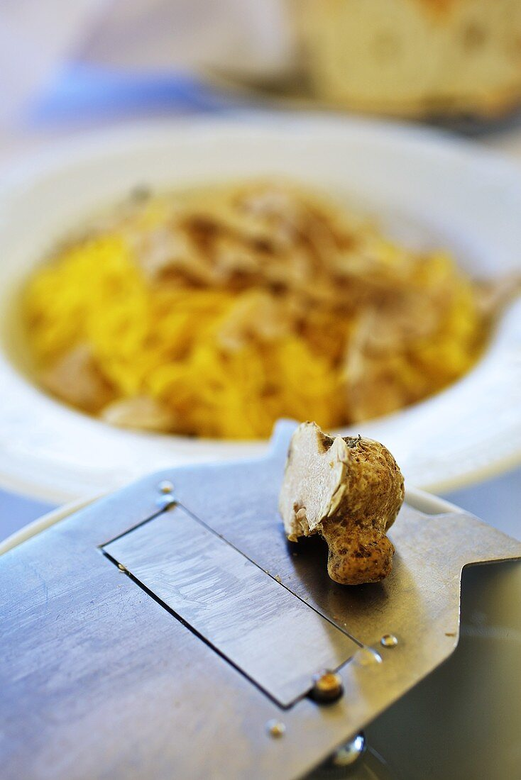 An alba truffle on grater with a truffle tajarin in the background