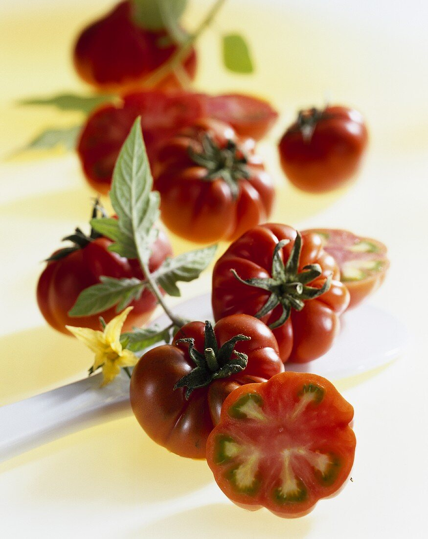 Tomatoes, variety Merinda (from Italy)