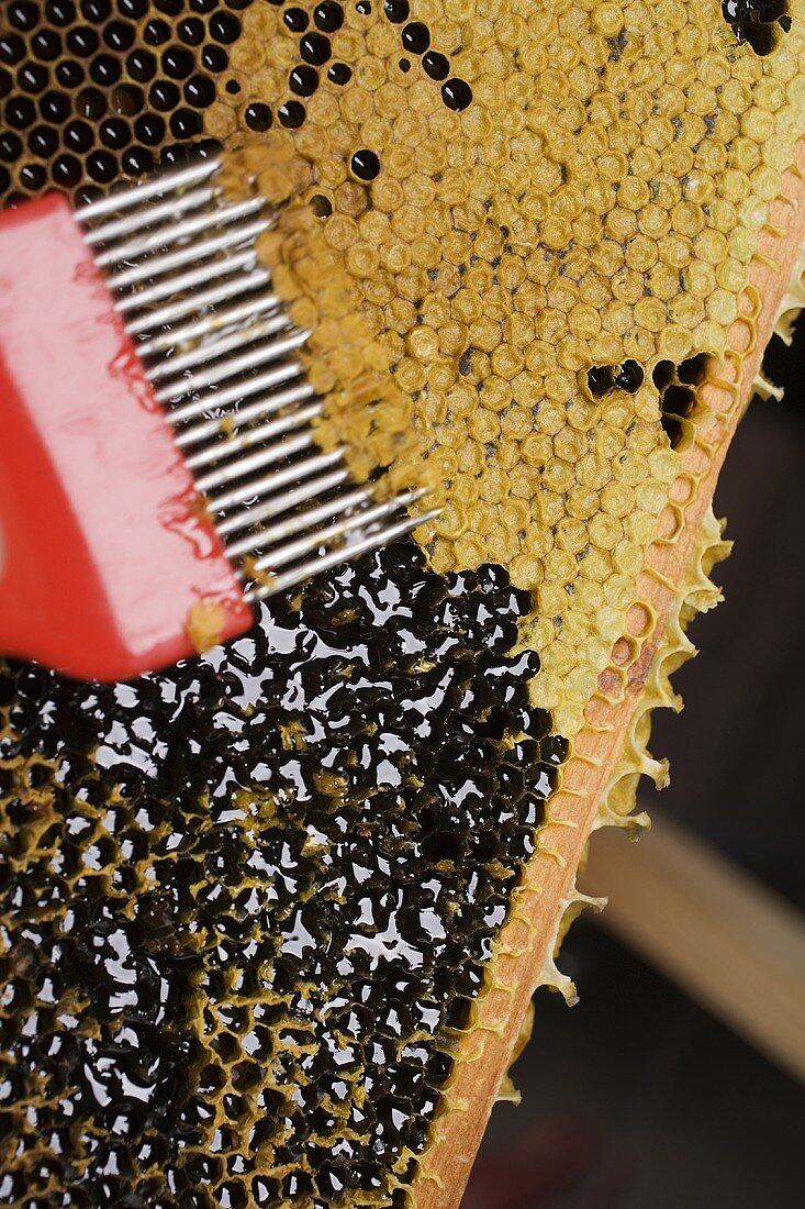 Honeycomb with uncapping fork