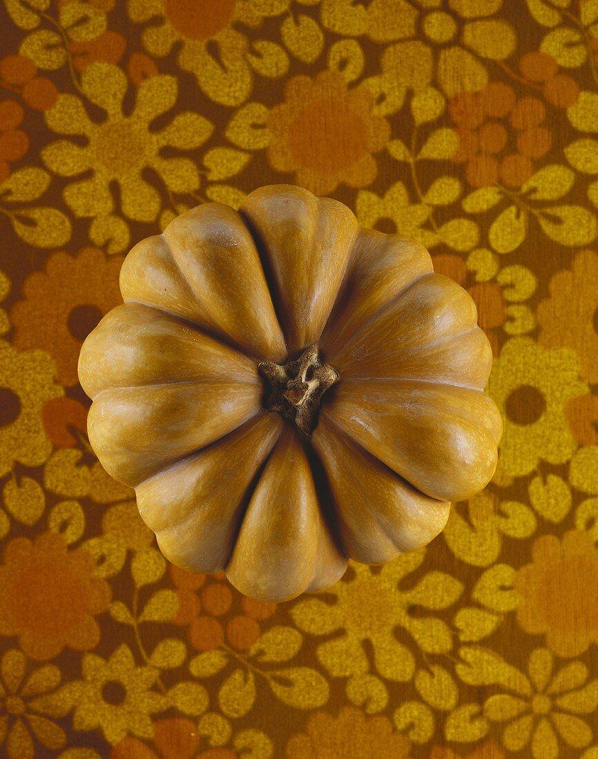 Orange pumpkin from above