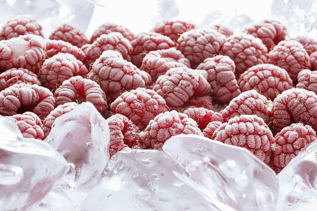 Frozen raspberries on ice cubes